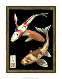 Koi Fish on Black I Giclee Print by Chariklia Zarris