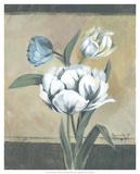 White Tulips I Print by Marietta Cohen