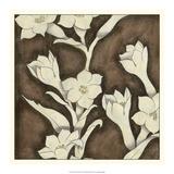 Floral Quartet I Lámina giclée premium por Megan Meagher