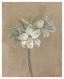 Blooms & Stems IV Prints by Marietta Cohen