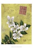 Postage VI Posters by Rick Novak