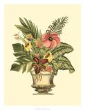 Tropical Elegance II Giclee Print