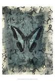 Butterfly Calligraphy IV Affischer av Elena Ray