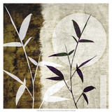Bamboo Moon I Prints by Christine Zalewski