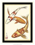 Koi Fish I Giclee Print by Chariklia Zarris