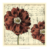 Vintage Composition II Giclee Print by  Vision Studio