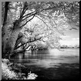 Spring on the River Square I Druck aufgezogen auf Holzplatte von Alan Hausenflock