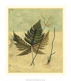 Tropical Fern V Premium Giclee Print by  Vision Studio