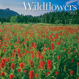 Wildflowers - 2013 Wall Calendar Calendars