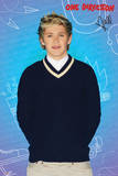 One Direction-Niall Pop Print