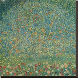 Apple Tree I, c.1912 Stretched Canvas Print by Gustav Klimt