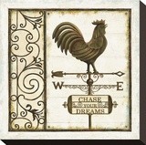 Weathervane Wisdom II Stretched Canvas Print by Daphne Brissonnet