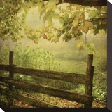 Autumn Overture Stretched Canvas Print by Dawne Polis