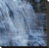 Cascada I Reproducción en lienzo de la lámina por Erin Clark