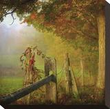 Farm Fence Stretched Canvas Print by Dawne Polis