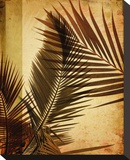 Warm Palms II Stretched Canvas Print