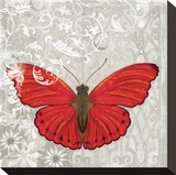 Red Butterfly Stretched Canvas Print by Alan Hopfensperger