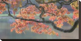 Acer III, Maple and Lake Stretched Canvas Print by Chris Farrow