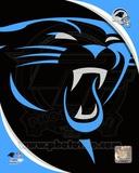 Carolina Panthers 2012 Team Logo Photo