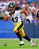 Troy Polamalu 2012 Action Photo