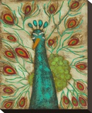 Spirited Peacock II Stretched Canvas Print by Anne Hempel