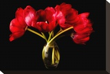 Red Tulips in a Glass Vase Stretched Canvas Print by Christine Zalewski