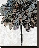 Ink Zinnia II Stretched Canvas Print by Christine Zalewski