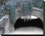 Trefoil Winter Impressão em tela esticada por Richard James