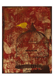 Birdcage Print by Jace Grey