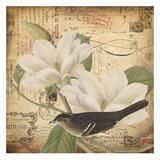 Vintage Bird II Poster by Carole Stevens