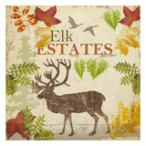Elk Prints by Taylor Greene