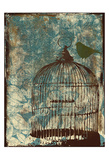 The Birdcage Affiches par Jace Grey