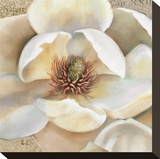 Magnolia Masterpiece II Stretched Canvas Print by Louise Montillio