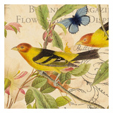Birdwatching II Prints by Tammy Repp