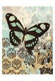 Butterfly Blues Posters by Carole Stevens