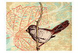 Bird Leaf II Posters by Carole Stevens