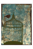 Birdcage Posters by Jace Grey