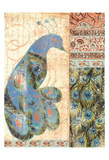 Peacock Prints by Elizabeth Jordan