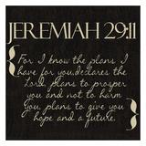 Jeremiah 29-11 Sztuka autor Taylor Greene