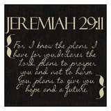 Jeremiah 29-11 Posters by Taylor Greene