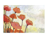 Poppies in Cream Giclée-tryk af Jennifer Lommers