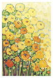 Marigolds for Carson Giclee Print by Jennifer Lommers