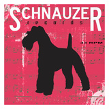 Schnauzer Posters by Taylor Greene