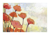 Poppies in Cream Giclee Print by Jennifer Lommers