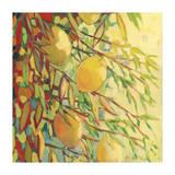 Four Lemons Giclée-tryk af Jennifer Lommers