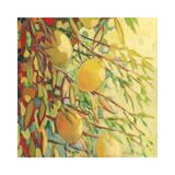 Four Lemons Wydruk giclee autor Jennifer Lommers