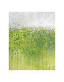 Mist on Green Reproduction proc&#233;d&#233; gicl&#233;e par Jessica Torrant
