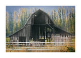Barn and Poplars Giclee Print by David Winston