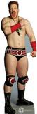 Sheamus - WWE Lifesize Standup Cardboard Cutouts