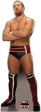 Daniel Bryan - WWE Lifesize Standup Poster Stand Up